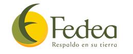Fedea